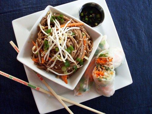 soba noodles w peanut sauce and veggie spring rolls 7-17-09 (1)b