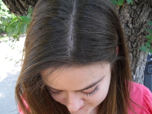 Light Mountain Natural Henna Hair Color And Conditioner Black