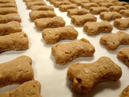 Oatmeal Dog Treats No Flour